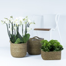 Natural woven lined baskets (H20cm)