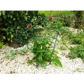 Small Peony Support - Green
