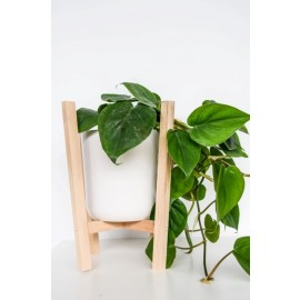 Scandi Beech Hanger with pot (29cm)
