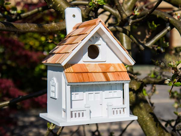 Bird Houses/Feeders