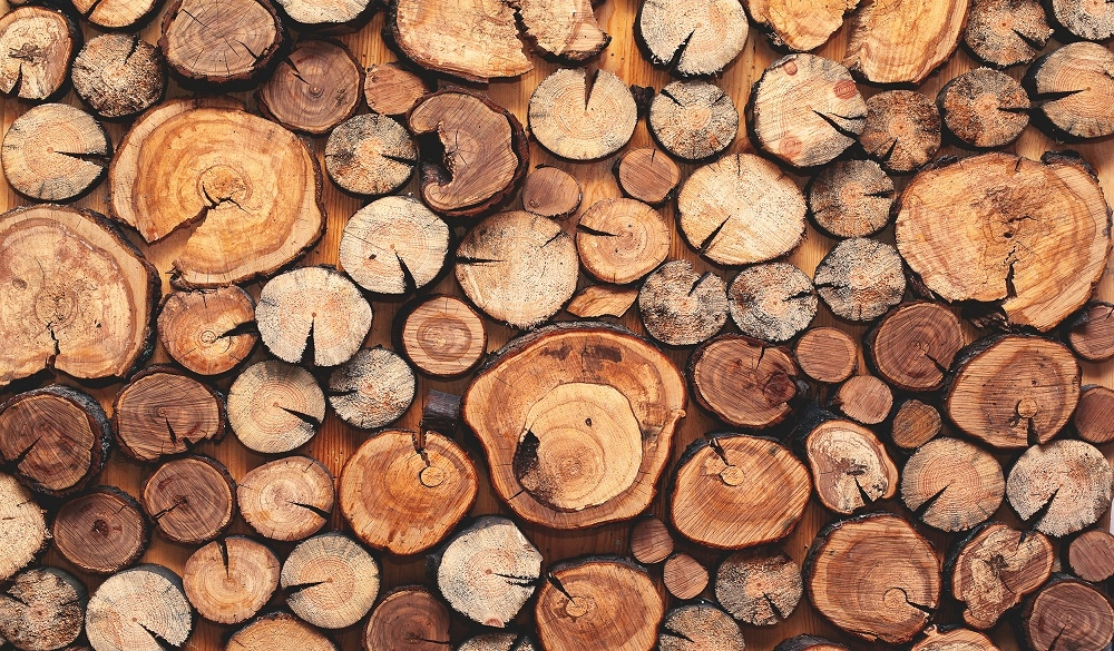 Hardwood and softwood options from our supplier